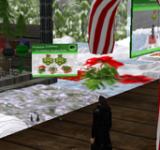 Christmas In Second Life
