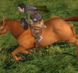 Riding My Very Own Pony In Lord Of The Rings Online