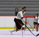 Second Life Hockey League Keeps Going